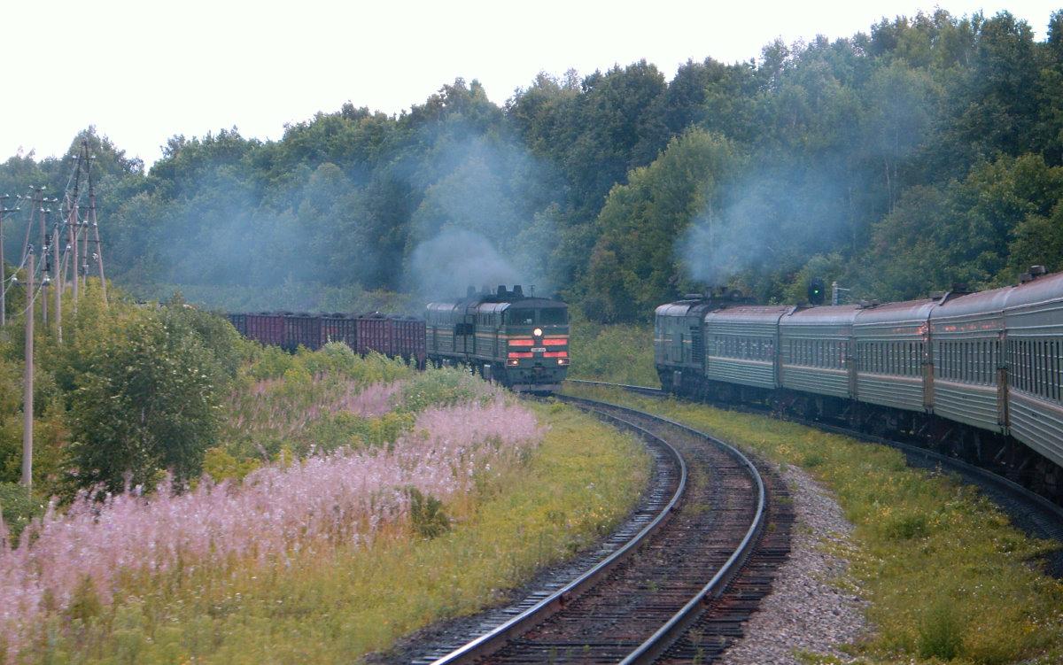 Б с пассажирским поездом №392 москва
