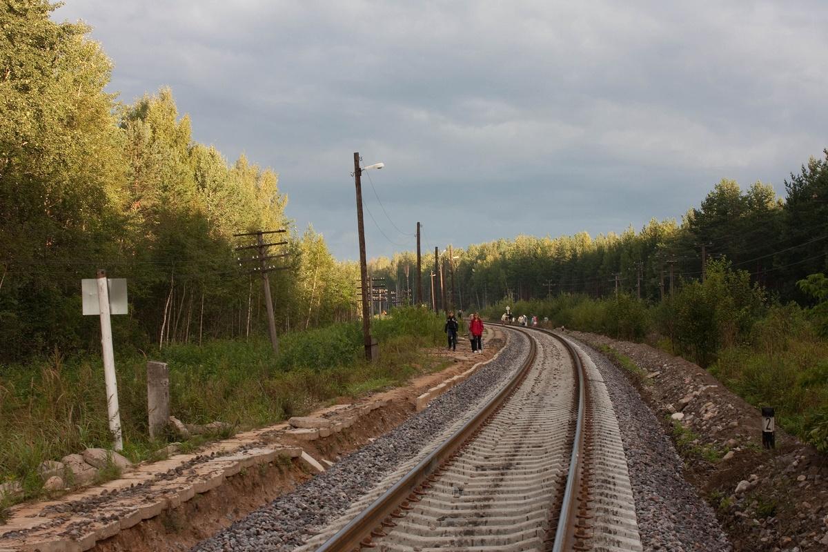 17 мая в селе карамышево псковского района отпраздновали завершение реставрации старинного парка дворянской усадьбы